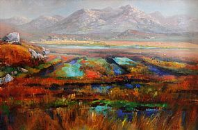 Kenneth Webb RWA FRSA RUA (b.1927), Connemara Bog at Morgan O'Driscoll Art Auctions