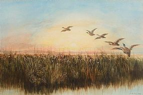 Andrew Nicholl, Geese Rising from the Reeds at Morgan O'Driscoll Art Auctions