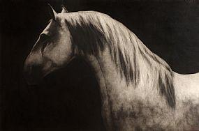 Paddy Lennon, Lousitano II at Morgan O'Driscoll Art Auctions