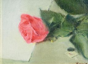 Thomas Ryan, Pink Rose at Morgan O'Driscoll Art Auctions