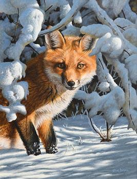 Steve Burgess, Fox at Morgan O'Driscoll Art Auctions