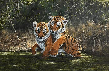 Steve Burgess, Tiger Cubs at Morgan O'Driscoll Art Auctions