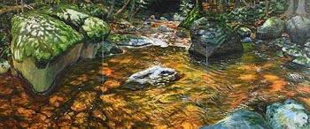 Charles Lawrance, Summer Brook (2007) at Morgan O'Driscoll Art Auctions