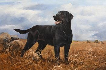 John Trickett, Just Say the Word at Morgan O'Driscoll Art Auctions