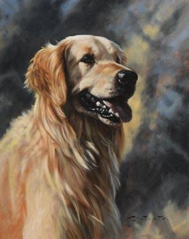 John Trickett, Golden Retriever at Morgan O'Driscoll Art Auctions