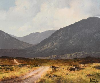 Eileen Meagher, Bog Road, Maam Valley, Connemara (1993) at Morgan O'Driscoll Art Auctions