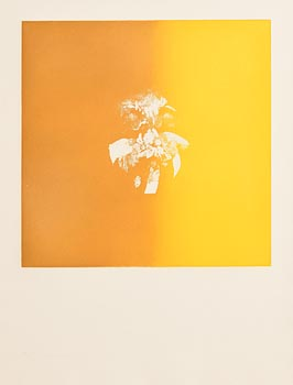 Louis Le Brocquy, Tete Jaune at Morgan O'Driscoll Art Auctions