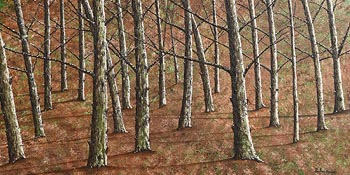Pauline Walsh, Between the Woods at Morgan O'Driscoll Art Auctions