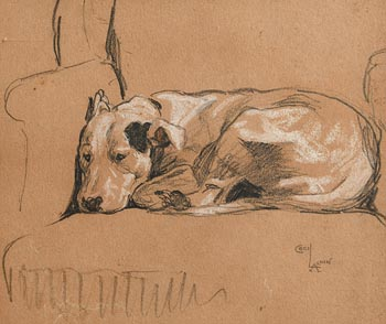 Cecil Aldin, Slumbering Dog at Morgan O'Driscoll Art Auctions