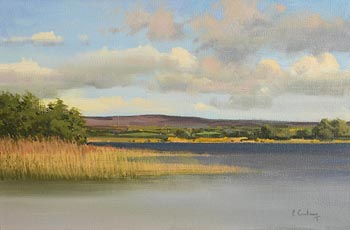Peter Curling, The View from the Bathing Pool, Inis Dara, Lough Derg at Morgan O'Driscoll Art Auctions
