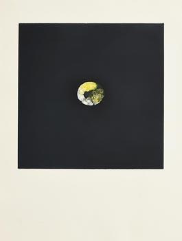 Louis Le Brocquy, Lemon (1974) at Morgan O'Driscoll Art Auctions