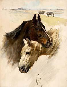 Arthur Wardle, Friends at Morgan O'Driscoll Art Auctions