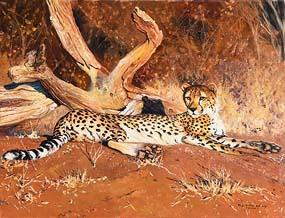 Pip McGarry, Cheetah at Morgan O'Driscoll Art Auctions