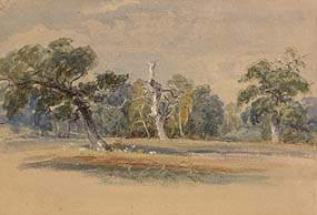 John Rathbone, Sherwood Forest at Morgan O'Driscoll Art Auctions