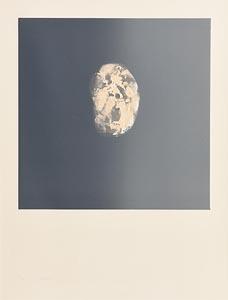 Louis Le Brocquy, Visage a Bouche Ouverte (1975) at Morgan O'Driscoll Art Auctions