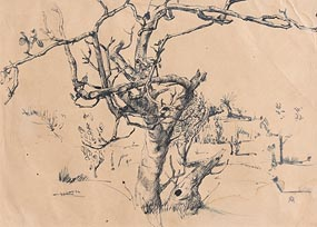 Colin Middleton, Winter Tree at Morgan O'Driscoll Art Auctions