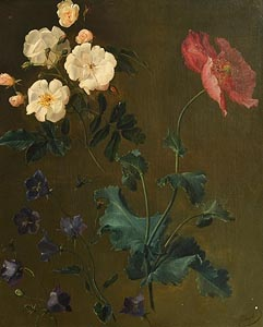 William Mussill, A Study of Flowers at Morgan O'Driscoll Art Auctions