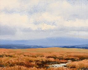 Peter Curling, Red Bog, Mountrath at Morgan O'Driscoll Art Auctions