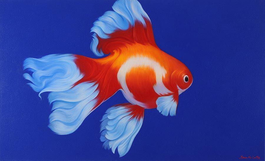 Brian McCarthy (b.1960), Goldfish at Morgan O'Driscoll Art Auctions