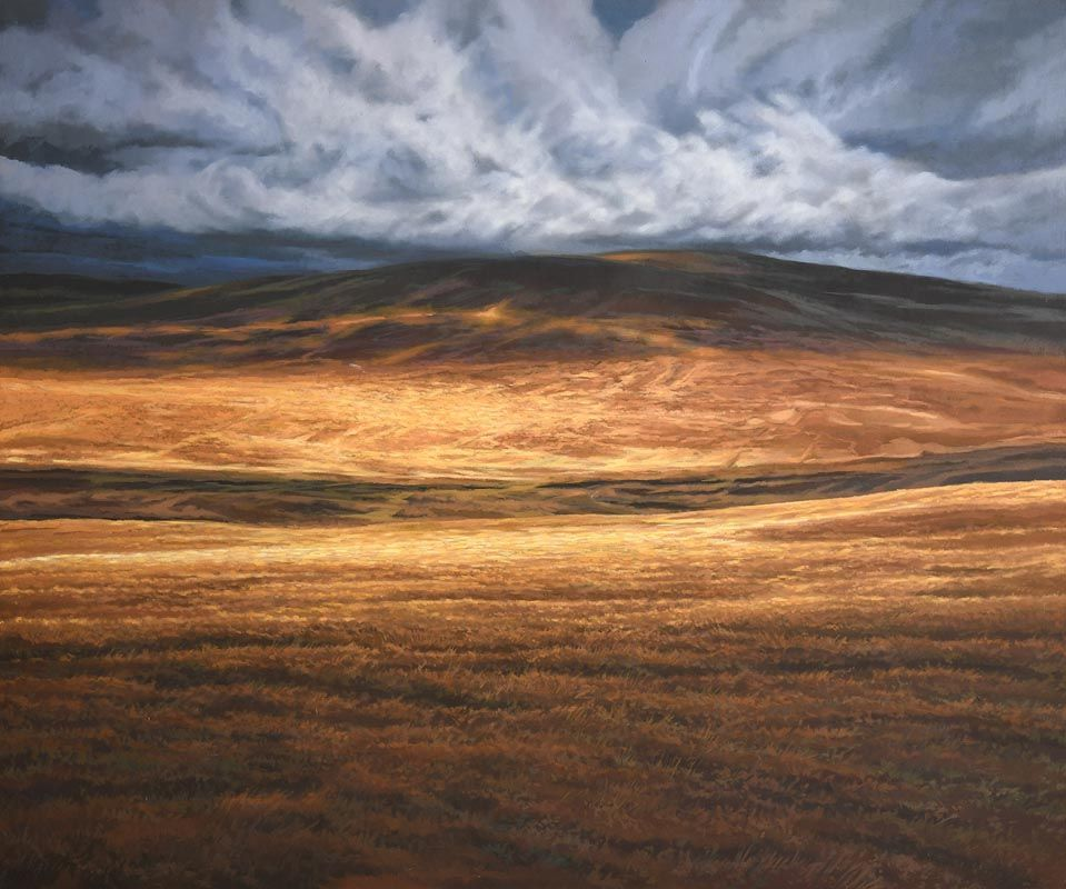Trevor Geoghegan, Sunlight on the Bog at Morgan O'Driscoll Art Auctions