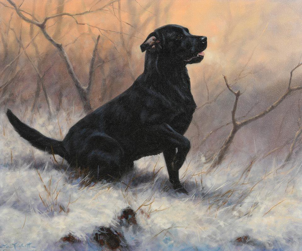 John Trickett, Gun Dog at Morgan O'Driscoll Art Auctions