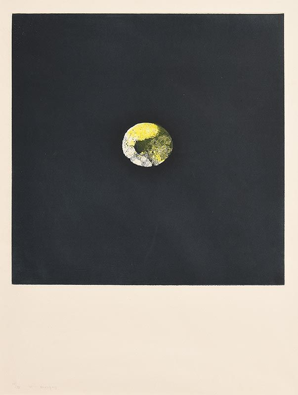 Louis Le Brocquy, Lemon (1974) at Morgan O'Driscoll Art Auctions
