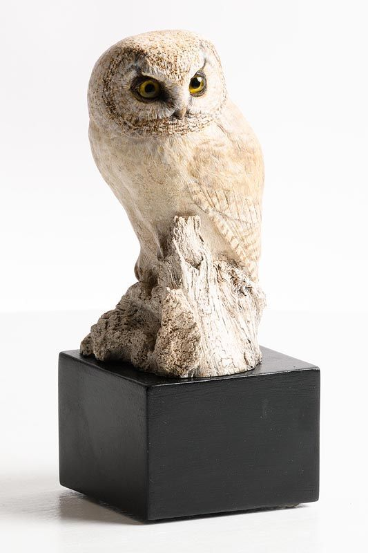 Michele Vitaloni, Little Owl (2014) at Morgan O'Driscoll Art Auctions
