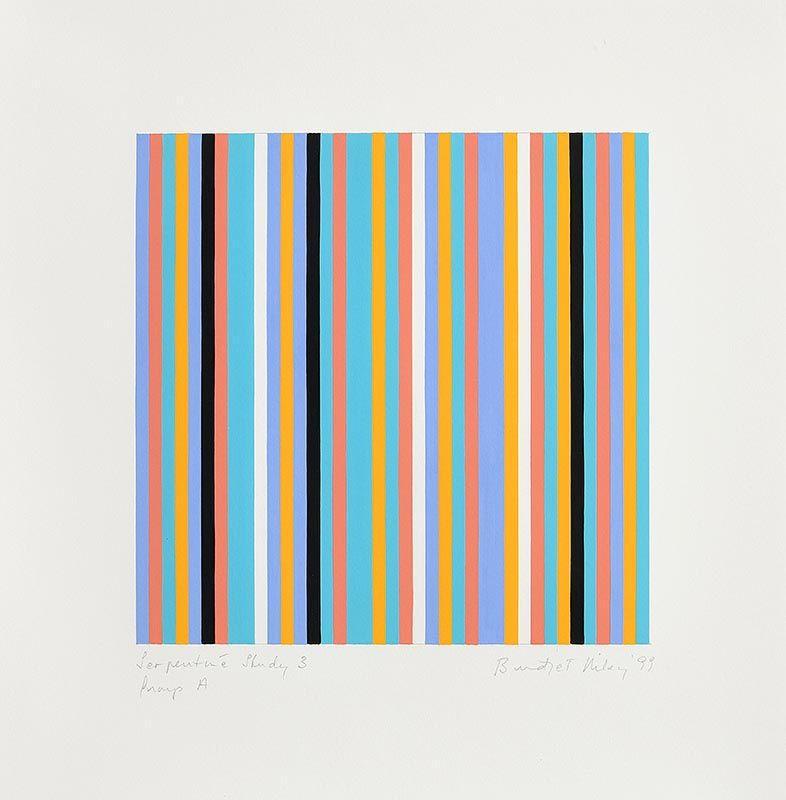 Bridget Riley, Serpentine Study 3, Group A (1999) at Morgan O'Driscoll Art Auctions