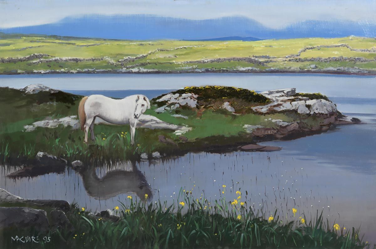 Cecil Maguire, Connemara (1995) at Morgan O'Driscoll Art Auctions