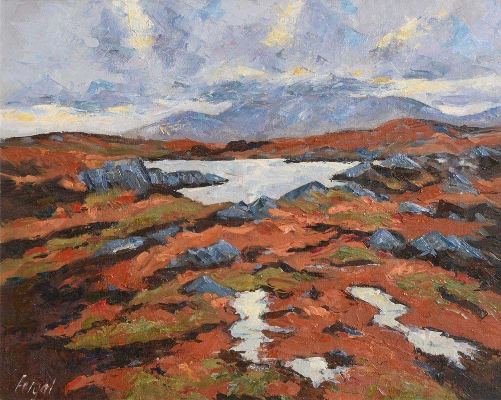 Fergal Flanagan, Winter Light, Roundstone Bog, Connemara at Morgan O'Driscoll Art Auctions